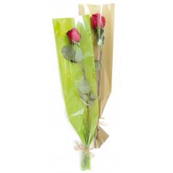 Etuis rose vert 16x80 par100