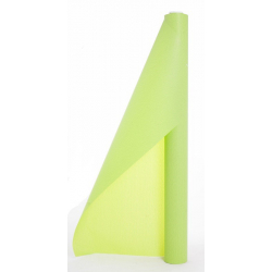 CARTOPACK - papier Bulle 0.70x50m Anis