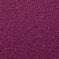 SABLE - Fuchsia 5 L