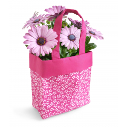 Sac Dandy Medium Fuchsia 8x13.5x13 par 10