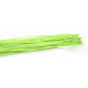 ROTIN DROIT - Botte de 80 cm Vert par 125 g