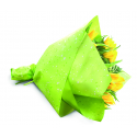 SPOT - Opaline 80 cm x 25 m Fuchsia Parme