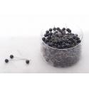 Epingles Perle Noir d10mmx60mm par 250