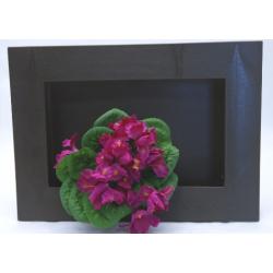 Cadre Végétal Chocolat 25 x 35 cm