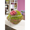 SPHERE - Boule de Mousse Florale D20 cm