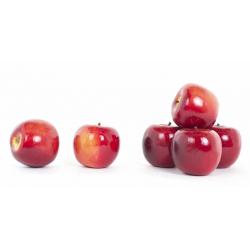 Pomme Rouge Brillant d8 cm par 6