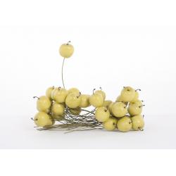 Pommes PM Verte par 36