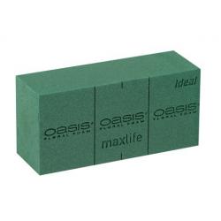 Mousse Oasis Ideal par 35 briques