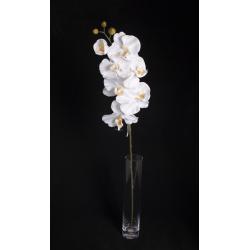 CETI - Orchidée Branche 7 fleurons H78 cm