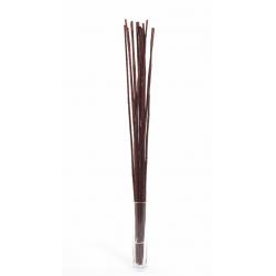 WILD CANNA - Bambou 100 cm Marron