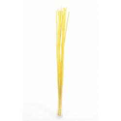 WILD CANNA - Bambou 100 cm Jaune