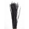 Gerbe Osier Noir 1m20