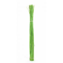 OSIER - Gerbe d'Osier Vert 120cm