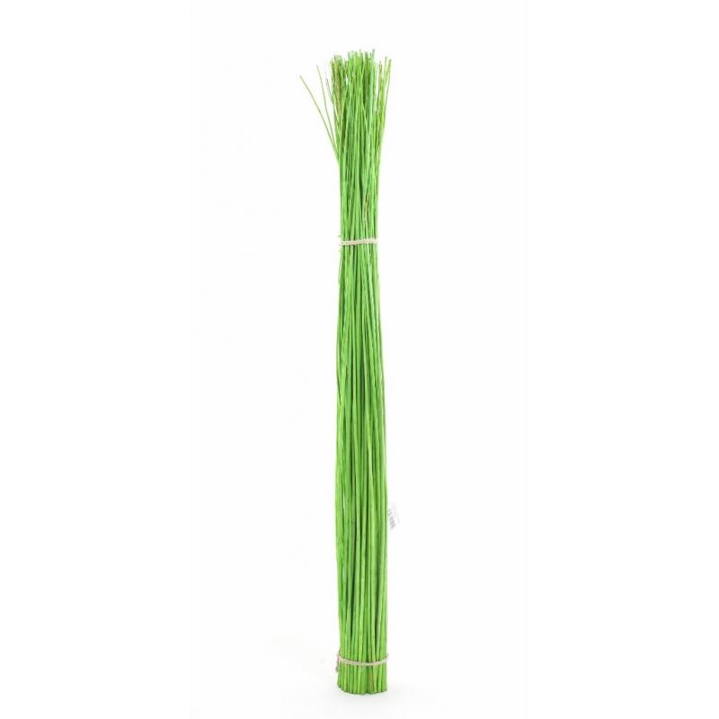 Gerbe Osier Vert 1m20