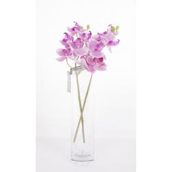 Mini Orchidée Mauve 33cm