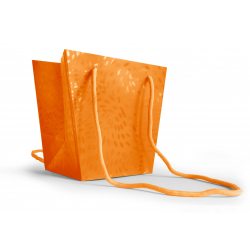 Sac Rigid-Neo 110x120x165mm Orange Par 10