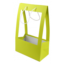 Sac Porte Bouquet MM 25x13x40 cm Anis par 10