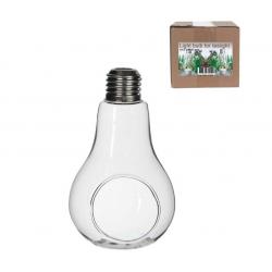 Ampoule Bulbe Vase D.13cm