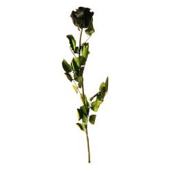 Rose Stabilisée sur tige Noir