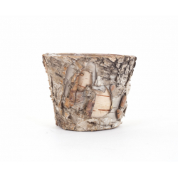 TREE - Pot en Ecorce de Bouleau D8 x H10 cm