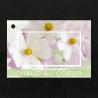 Carte Jeso Brillant Gold X par 10 Chaud Au Coeur