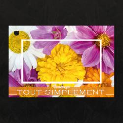 COMME CA - Carte Jeso Brillant Gold X par 10