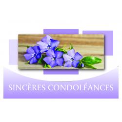SINCERES CONDOLEANCES - Carte Voeux Tendresse par 10