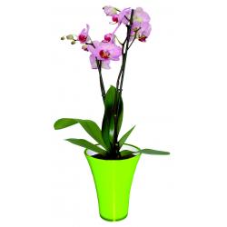 FIZZY - H20,5 x D14 cm Vase PVC Vert