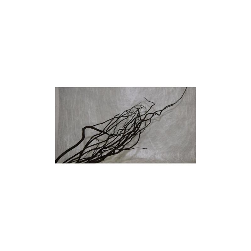 Salix Noir 150cm