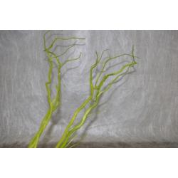 Salix Vert 1.50 m