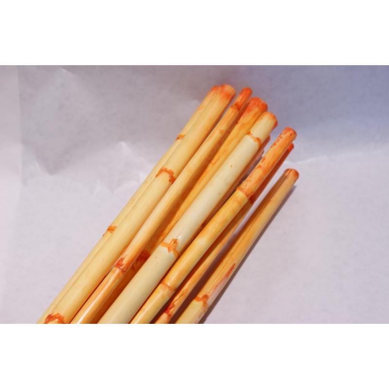 Canna Italy Orange 16 100cm par 13
