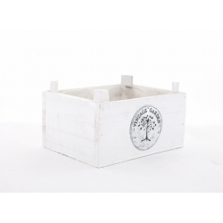 TREE - Coupe Rectangle Bois Blanc Vintage L16,5 x P12,5 x H8 cm