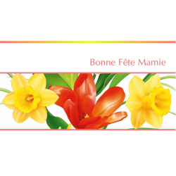 BONNE FETE MAMIE - Carte double Tendresse par 10