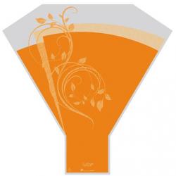 Cone 50x45x12 Avance Nature Orange par 50