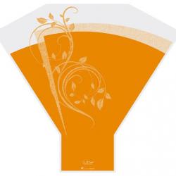 Cone 50x50x15 Nature Orange par 50