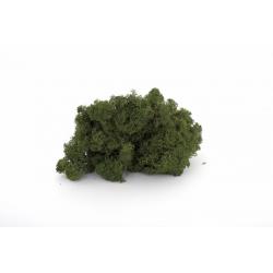 Mousse Islande Vert par 500grm
