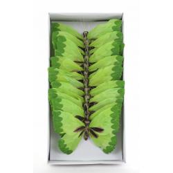 Papillons 20 cm Vert/rose par 12