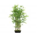TROPIC - Bambou en Pot D30 x H120 cm