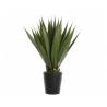 TROPIC - Plantes en Pot D55 x H85 cm