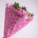 Cone 54x44x12 Fantasia Rose par 50