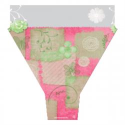 GARDEN - Cone 50x54x15 par 50 Rose et Vert