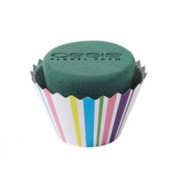 Cupcakes Rayures Intenses GM par 6