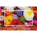 Carte Jeso Diamond I par 10 Une Petite Fleur Fait Toujours Chaud