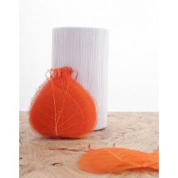 Feuille Skelet Bayan Orange 24 par 200