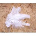 MARABOU - Plumes blanches Par 25g