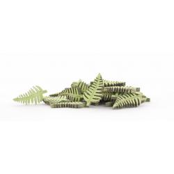 Fougére bois d5 cm Vert par 30