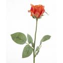 BLASY - Rose H68 cm Orange