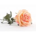 Rose ouverte Pêche 64cm
