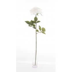 GARDEN - Rose ouverte artificielle 64cm Crème