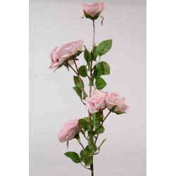 Rose Eden tige 82 cm Rose